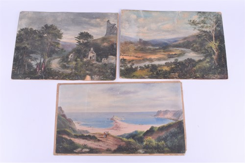 Lot 41 - Two 19th century oil paintings depicting Irish...
