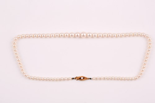 Lot 8 - A graduated cultured pearl necklace, the...